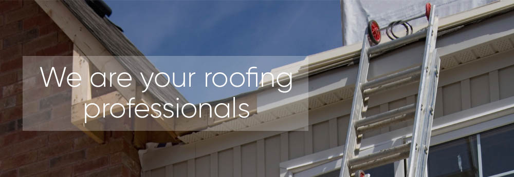 Roofer Gainesville Florida